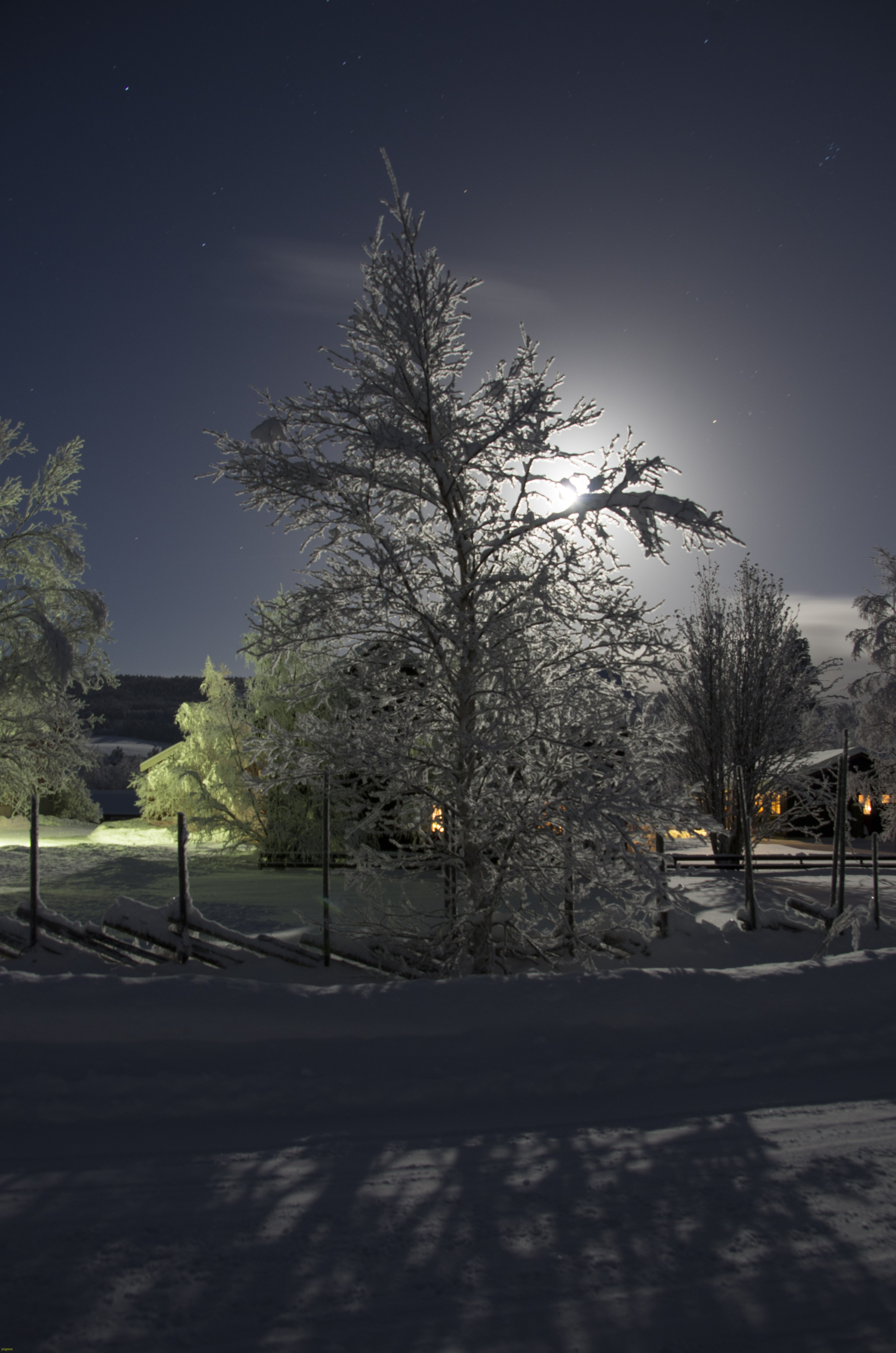 Måneskinn på Sagmoen, des.2016