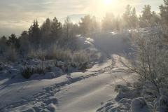Kald desember på Skarpåsen