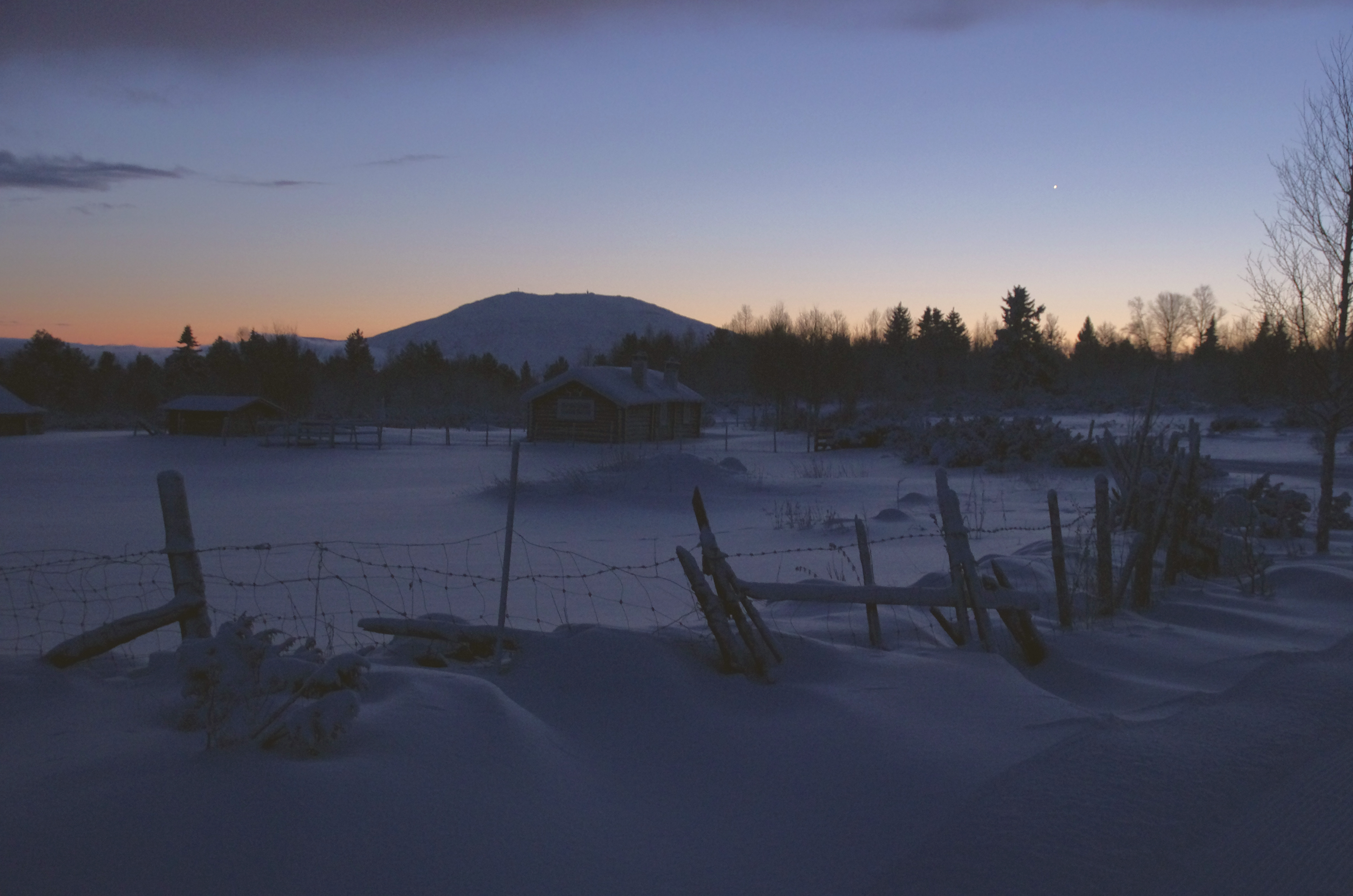 bluehour