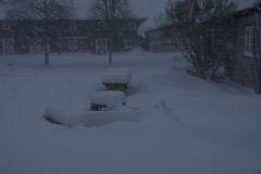 Snøstorm