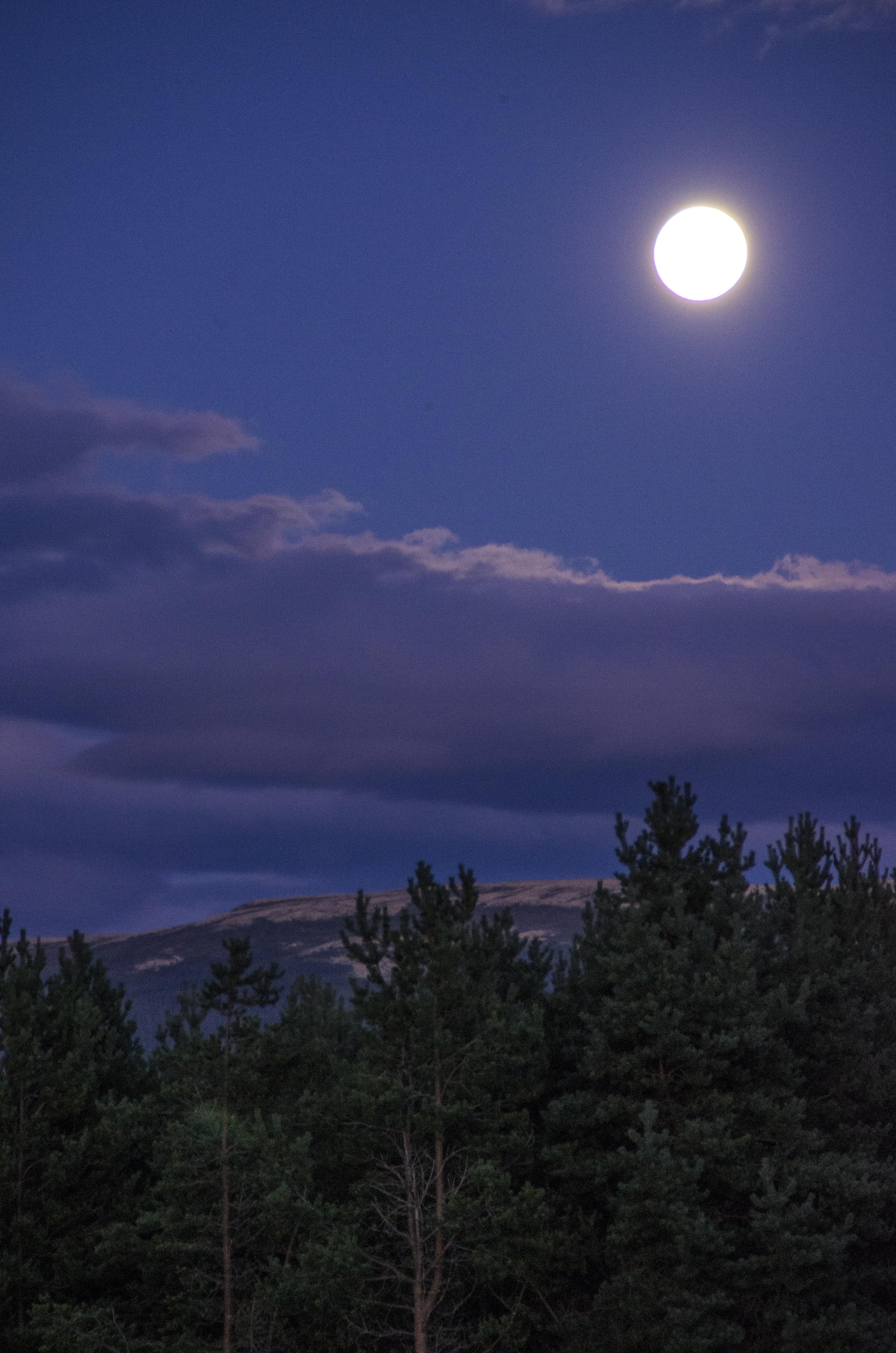 måneskinn1