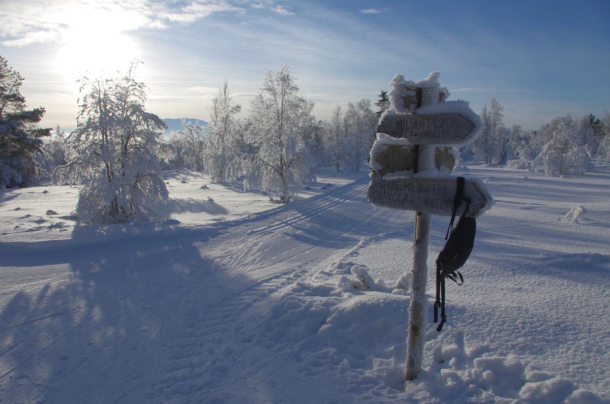 skilt-ski